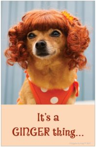 Giggles by Gigi It's a Ginger Thing Poster
